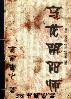 乌龙阴阳师封面